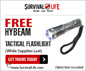 Free HyBeam Flashlight